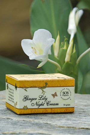 Ginger Lily Night Cream